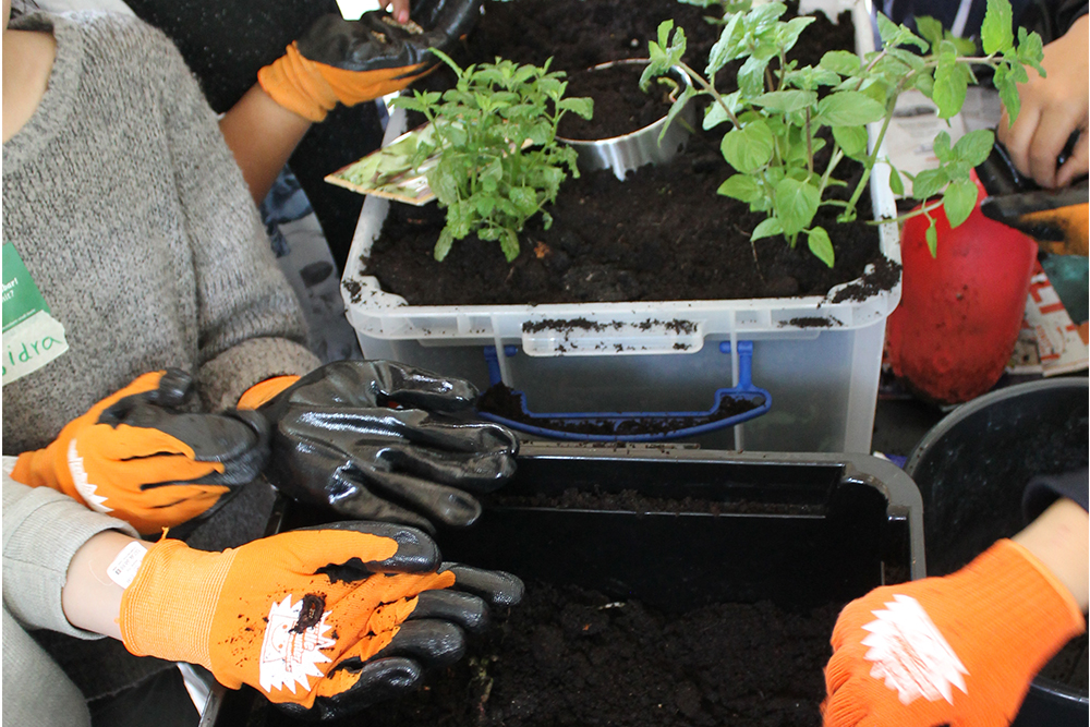Bau einer Sprachspinat Wupf-Wurm-Pflanzen-Kiste beim Ideenworkshop für das Jugendzentrum Köln Weiden