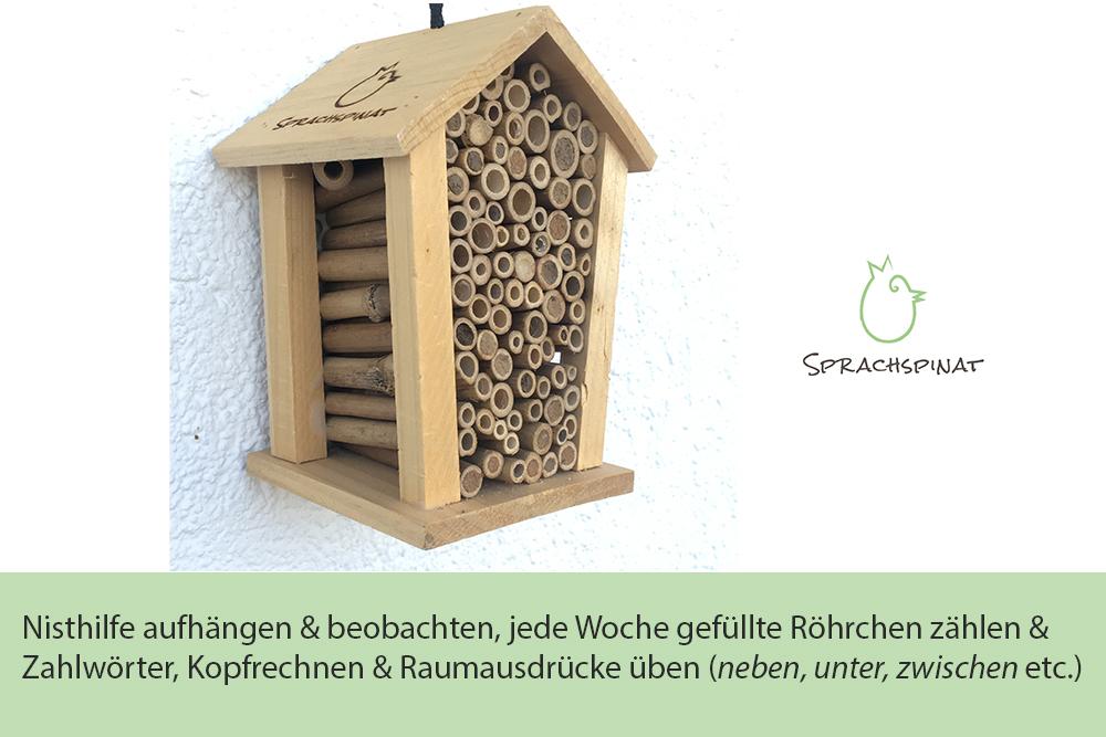 Abb.7: : Sprachspinat-Sprachanlass Insektennisthilfe