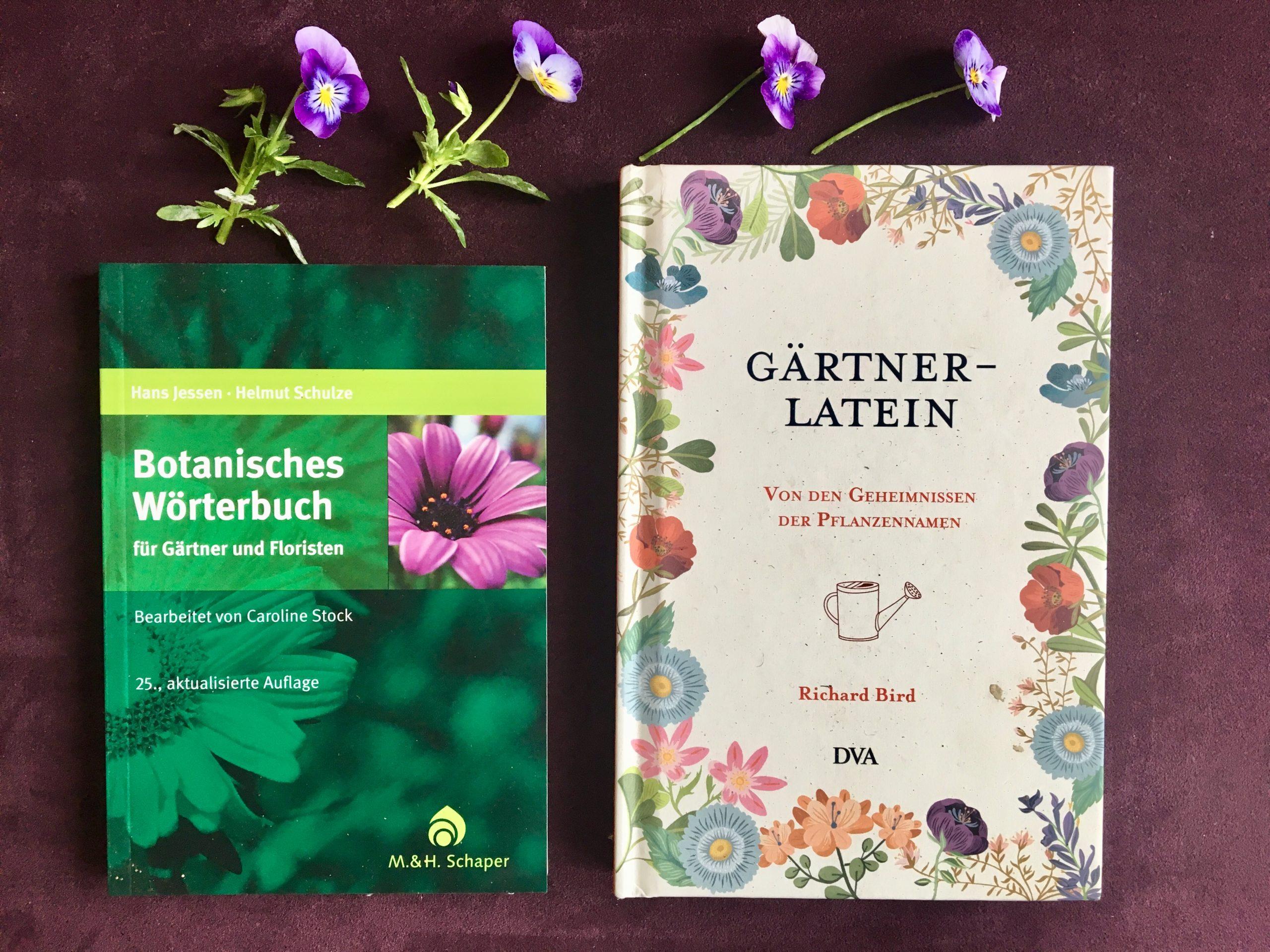 Hornveilchen und Bücher zu botanischen Pflanzennamen