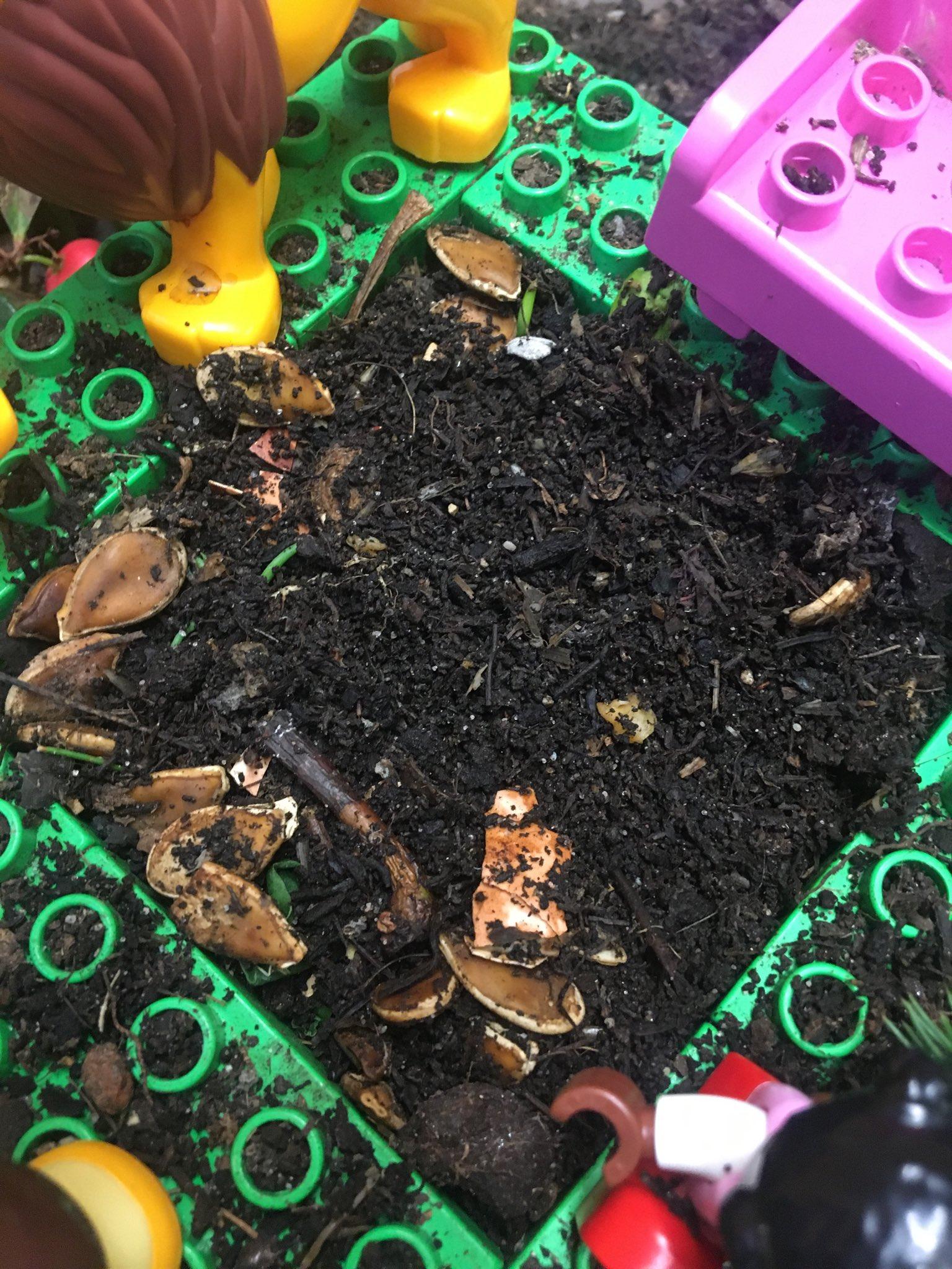 Wurmkompost im Lego-Wurmturm - mit ein paar letzten unverrotteten Kürbiskernen