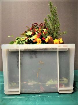 Die Lego-Variante der WuPf-Wurm-Pflanzen-Kiste mit Weihnachtswaldgarten und Tierfamile für Sprachaktivitäten mit räumlicher Sprache und Verwandtschaftsbezeichnungen